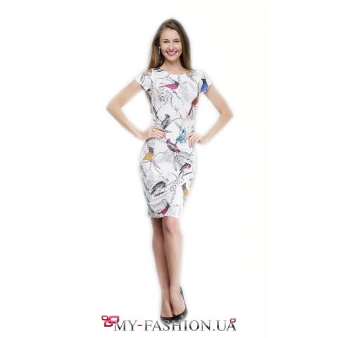 Красивое платье-футляр с коротким рукавом